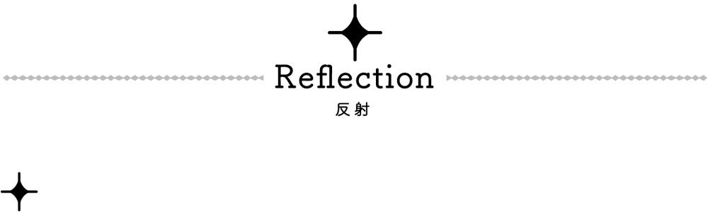 Reflecion 反射